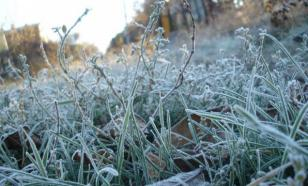 В некоторых регионах России прогнозируют заморозки