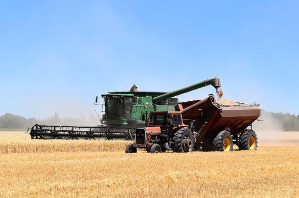 Экспорт российской сельхозтехники подскочил в 2,2 раза