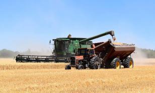 Россия и Канада станут новыми центрами производства продуктов питания