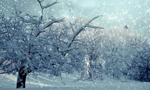 На 8 Марта ожидаются сильный ветер и снегопады в Москве