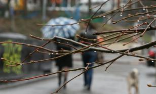 В 11 регионах РФ ожидается снег в начале сентября