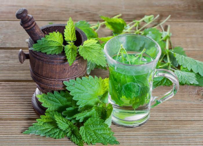 Самое время добавить в рацион чаи из трав, чтобы  поддержать иммунитет