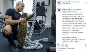 """Толстый кот, которого не пускали в самолет, тренировался с """"Адмиралом"""""""
