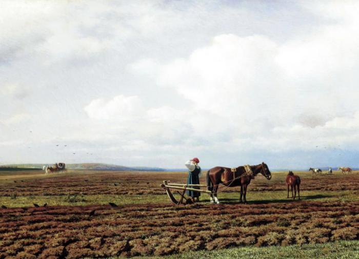 Раскрыто влияние навоза на состояние почв в засушливых регионах