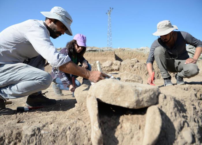 Археологи обнаружили в Сибири скифскую гробницу возрастом 3000 лет
