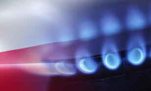 Немцев призвали экономить газ, чтобы не угождать президенту РФ Путину