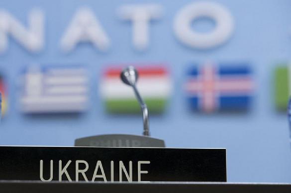 Украина в НАТО: шаг вперед, два шага назад