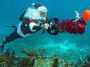 Рождественское турне по традициям мира