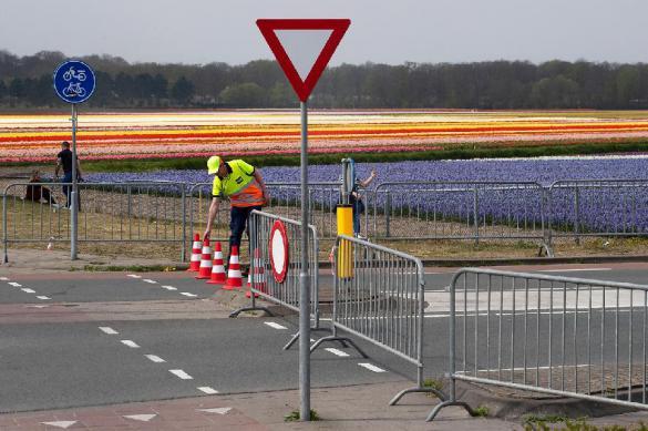 Больше 29 тысяч жителей Нидерландов больны коронавирусом