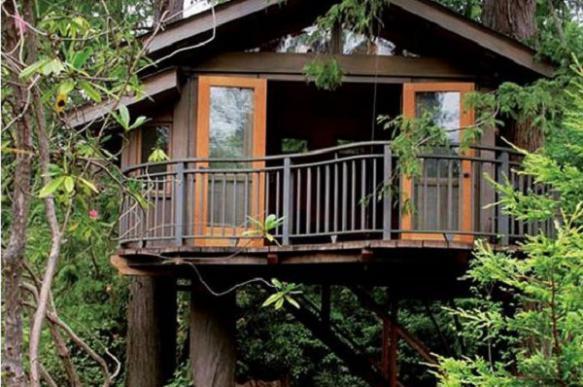 """""""Дом на дереве"""" разрешили построить в английском графстве"""