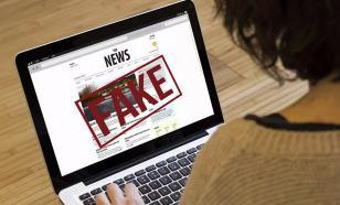 В Совфеде призвали закрывать русофобские СМИ за публикацию фейков