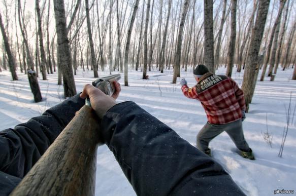 После гибели девочки в селе республики Коми разрешили отстрел волков