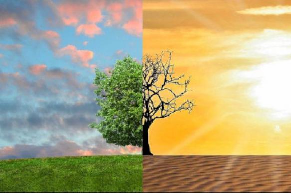 Можно ли предотвратить наступление всеобъемлющего голода на Земле?