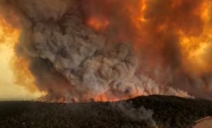Лесные пожары уничтожают итальянскую Сардинию