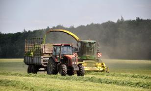 Российские фермеры жалуются на дефицит кормов