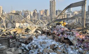 Новые бактерии помогут вести борьбу с пластиковым мусором