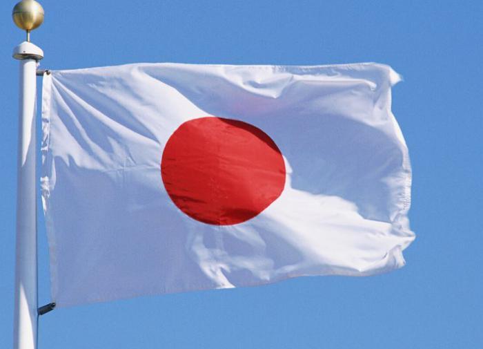 В японской префектуре впервые за 20 лет поменяли губернатора