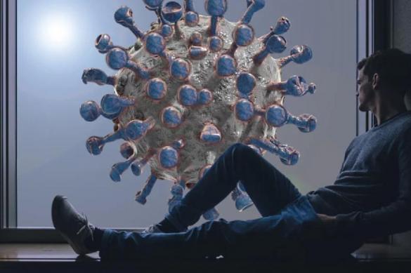 Скорость мутации COVID-2019 установили ученые