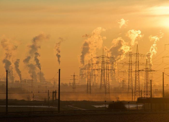 Загрязнение воздуха стало главной причиной смерти 500 тыс. детей за год