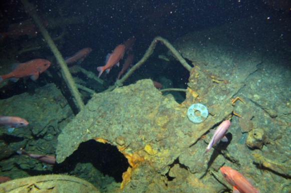 Подлодка, сгинувшая 100 лет назад с экипажем, найдена у Папуа‐Новой Гвинеи. Видео