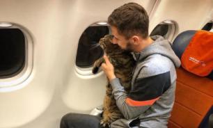 Толстый кот Виктор не смог изменить правила перевозки животных