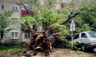 Мощный циклон оставил без электричества жителей Сахалина