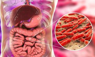 Кишечная микрофлора может намекнуть о раке толстой кишки
