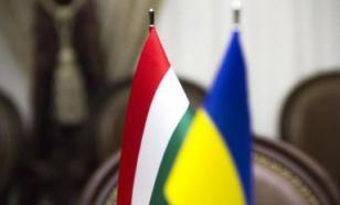 В Закарпатье разгорелся очередной украино-венгерский скандал