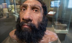 Как труд погубил неандертальцев