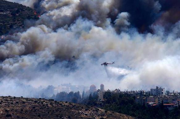 Пожар на Пелопоннесе едва не уничтожил три деревни и пляж. Видео