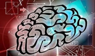 О коэффициенте интеллекта и связанных с ним глупостях