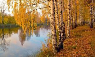 Теплая осень поможет улучшить психическое здоровье москвичей