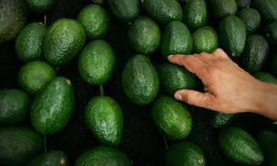 США ждет дефицит авокадо в случае закрытия границы с Мексикой