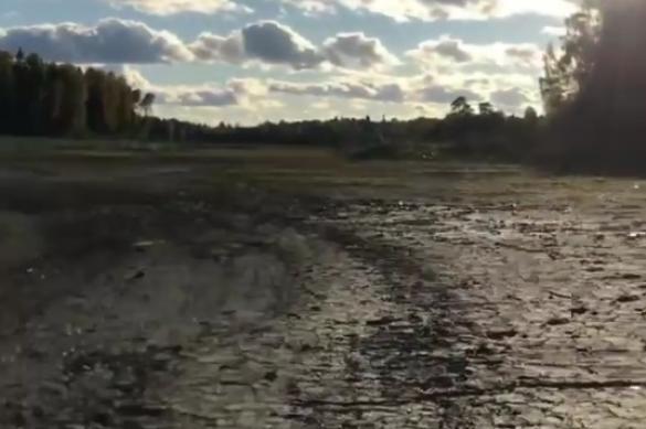 "Озеро Ямное снова ""провалилось"" под землю"