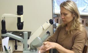 Российский ученый назвала открытый вид насекомого в честь своего отца