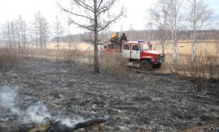 В Забайкалье сгорело 300 га леса из-за неисправного трактора
