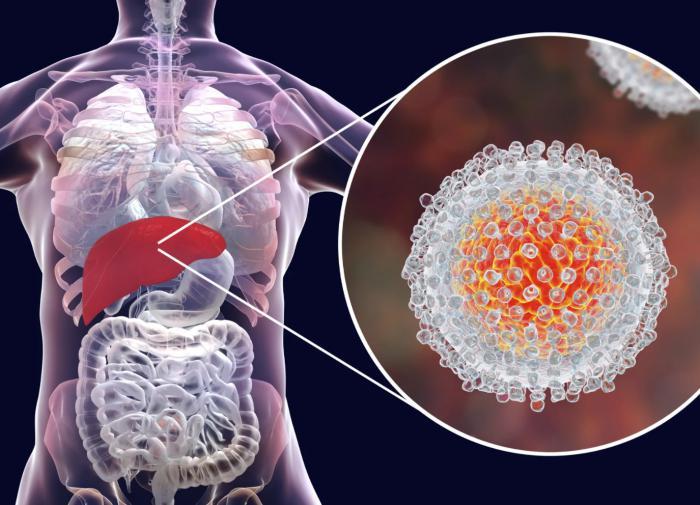 Актуальные методы и средства лечения гепатита C