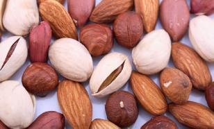 Орехи: польза и вред для здоровья человека