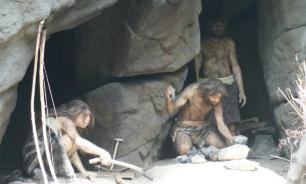 Специалисты выяснили срок жизни человека в дикой природе
