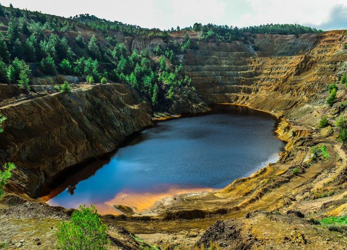 Разрушение экосистем приведет к более серьезным пандемиям