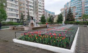 В Красноярске накрыли антивандальной сеткой клумбы с тюльпанами