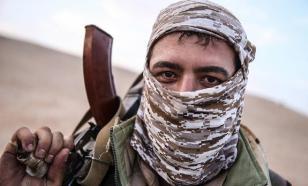 Дандыкин о вербовке турками сирийских наемников