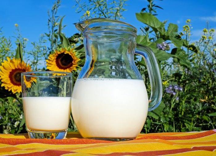 Парное молоко приносит больше вреда, чем пользы