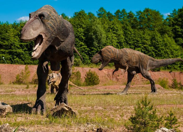 Эксперты назвали причину глобального похолодания в конце эры динозавров