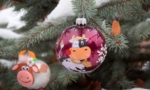 Россияне массово скупают символ нового года
