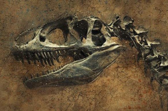 В Германии обнаружили череп крошечного динозавра