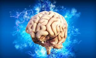 Уменьшение размеров мозга связано с алкоголем