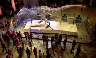 Парк Юрского периода останется мечтой: воскрешение динозавров невозможно