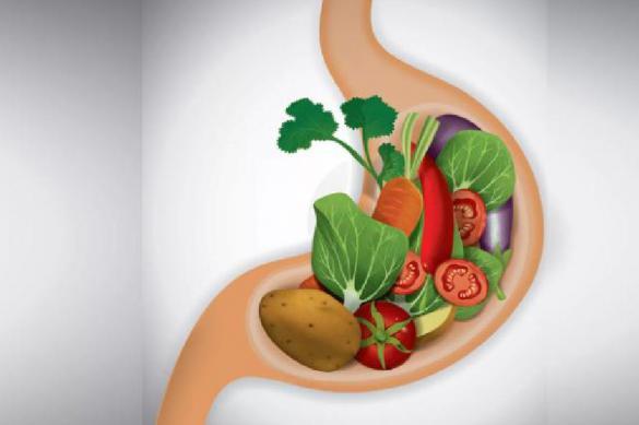 Какие продукты полезны для желудка?