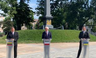 Депутат Рады Витренко: поляки и литовцы всегда притесняли Украину